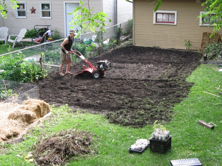 DH going over what I already tilled. This quarter of the back yard got tilled 3 times, with DH apologizing to all the worms along the way.