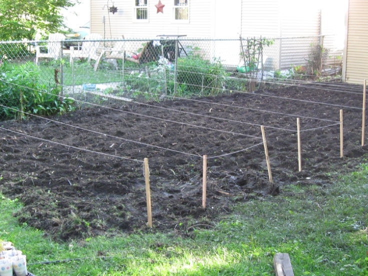 My nexzt task—because I can't afford to fill raised beds this year—is to rake as much of the tilled soil into mounded beds. Sort of a poor man's raised bed.