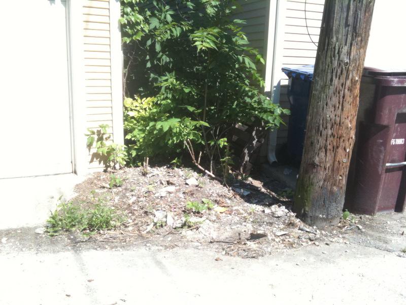 Trash hell suburbs 35