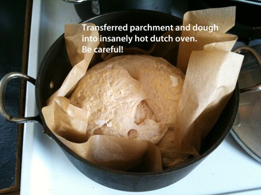 lifting dough into dutch oven