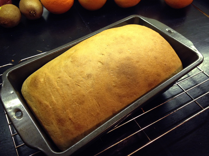 """My tiny 24"""" oven has some hotspots so nothing I ever bake turns out even but this sure was the softest and yummiest 100% whole wheat bread I've made so far!"""