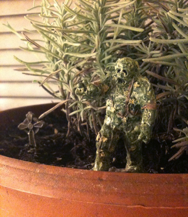 Swamp monster fits right into my potted rosemary.